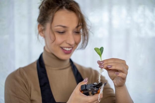 Szczęśliwa uśmiechnięta atrakcyjna kobieta przycinanie korzeni kiełków kwiatowych przed sadzeniem