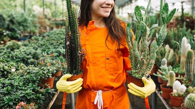 Szczęśliwa żeńska ogrodniczka trzyma kaktusowe doniczkowe rośliny w szklarni