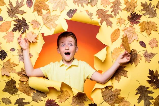 Szczęśliwe dzieci jesienią szczęśliwe słodkie sprytny chłopak portret pięknej szczęśliwej rudej chłopczyk zbliż...