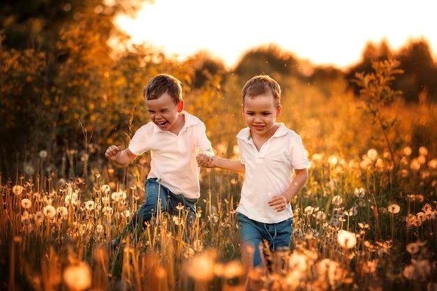 Szczęśliwe dzieci latem bawiące się mleczami w terenie