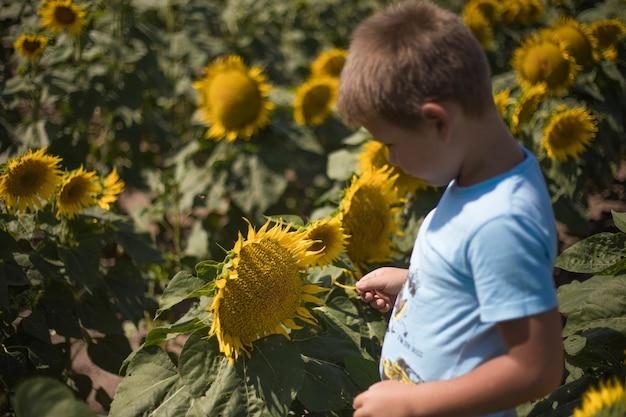 Szczęśliwe dziecko bawi się słonecznikiem na świeżym powietrzu. dziecko zabawy w zielonym polu wiosny na tle błękitnego nieba. koncepcja zdrowego i aktywnego stylu życia