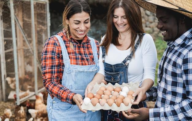 Szczęśliwi rolnicy zbierający ekologiczne jaja z kurnika - wielorasowi ludzie bawią się pracując w ekowiosce - koncepcja żywności helathy - skoncentruj się na twarzach kobiet