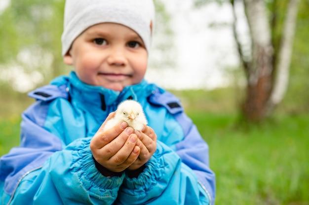 Szczęśliwy chłopiec mały rolnik trzyma kurczaka noworodka w ręce w plenerowej naturze.