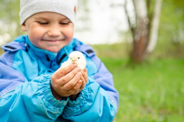 Szczęśliwy chłopiec mały rolnik trzyma w rękach kurczaka noworodka