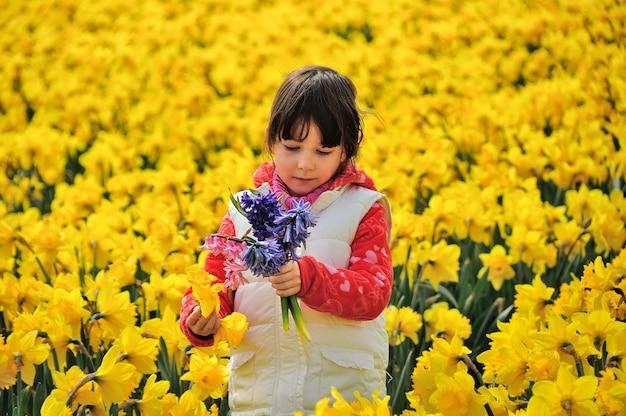 Szczęśliwy dzieciak z wiosną kwitnie na żółtym daffodils polu, mała dziewczynka na urlopowej wycieczce w holandiach