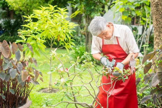 Szczęśliwy i uśmiechnięty starszy azjata, po przejściu na emeryturę w domu, przycina gałązki i kwiaty jako hobby. koncepcja szczęśliwego stylu życia i dobrego zdrowia dla seniorów.