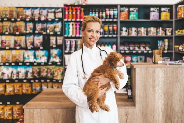 Szczęśliwy i uśmiechnięty weterynarz w średnim wieku kobieta stojąc w sklepie zoologicznym i trzymając ładny miniaturowy czerwony pudel patrząc na kamery.