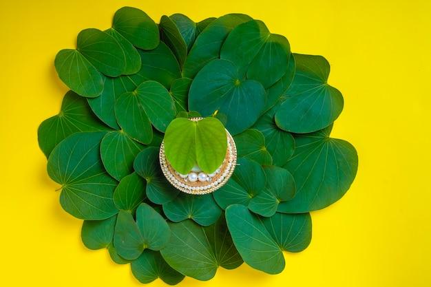 Szczęśliwy kartkę z życzeniami dasera, zielony liść apty i ryż, indyjski festiwal dasera
