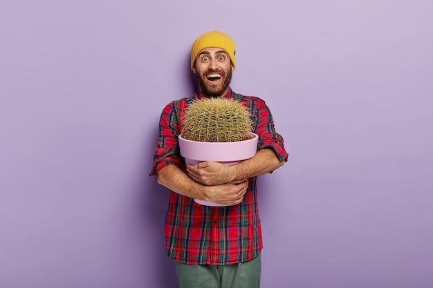 Szczęśliwy kaukaski mężczyzna obejmuje doniczkę z dużym kaktusem, będąc miłośnikiem roślin, otrzymuje jako obecną roślinę domową