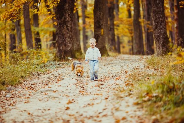 Szczęśliwy mały chłopiec spacerujący ze swoim psem beagle w parku