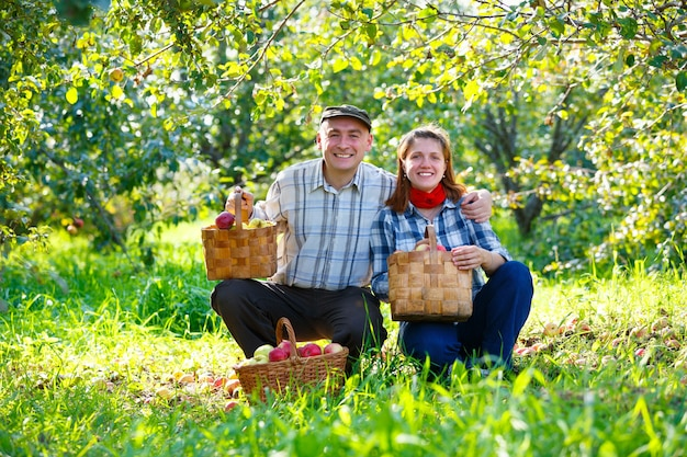 Szczęśliwy mężczyzna i kobieta z koszami jabłek w ogrodzie