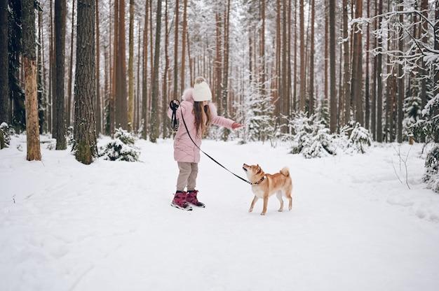 Szczęśliwy rodzinny weekend - mała słodka dziewczyna w różowym ciepłym stroju wierzchnim, spacery z czerwonym psem shiba inu w śnieżnobiałym zimowym lesie na zewnątrz