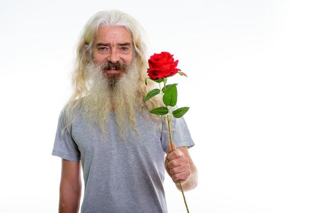 Szczęśliwy starszy brodaty mężczyzna uśmiecha się, dając czerwoną różę