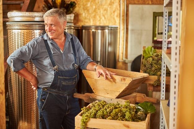 Szczęśliwy starzejący się pracownik winnicy trzymający rękę na kruszarce do winogron, stojąc w winnicy