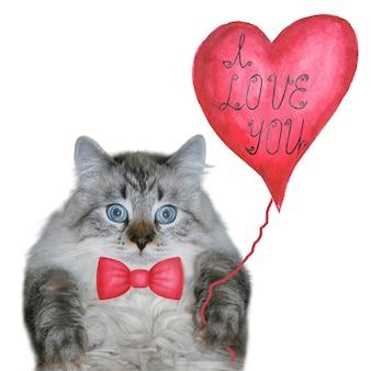 Szczęśliwy tło walentynki śmieszny kot z czerwoną muszką i czerwonym balonem