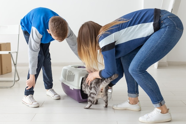 Szczupła, młoda matka i synek wprowadzają swojego pięknego, szarego kota szkockiego zwisającego do nowego
