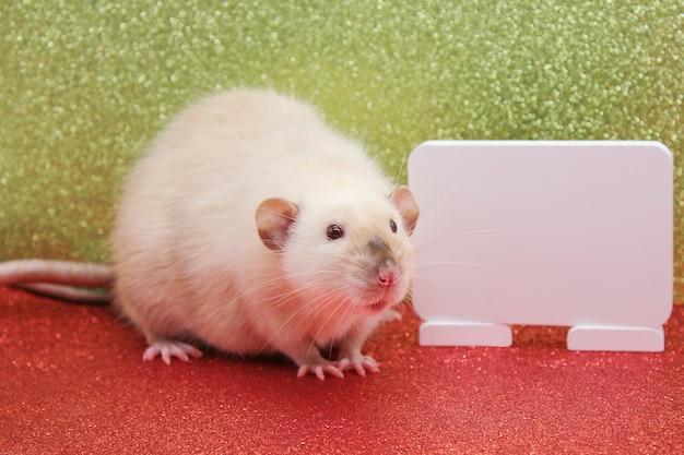 Szczur jest symbolem nowego roku 2020. biała tablica do pisania tekstu