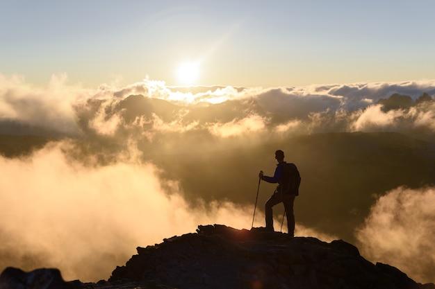 Szczyt arywista w mount rainier national park