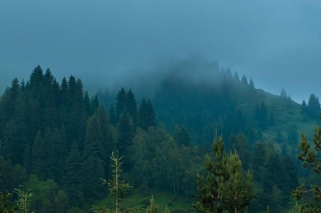Szczyt góry i las ukryte są w błękitnej mgle. mistyczny krajobraz