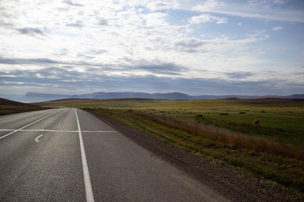 Szeroka droga z oznaczeniami na środku pola