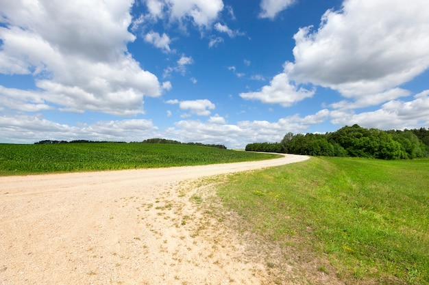 Szeroka wiejska droga bez asfaltu z piaskiem wznoszącym się na wzgórze, letni krajobraz