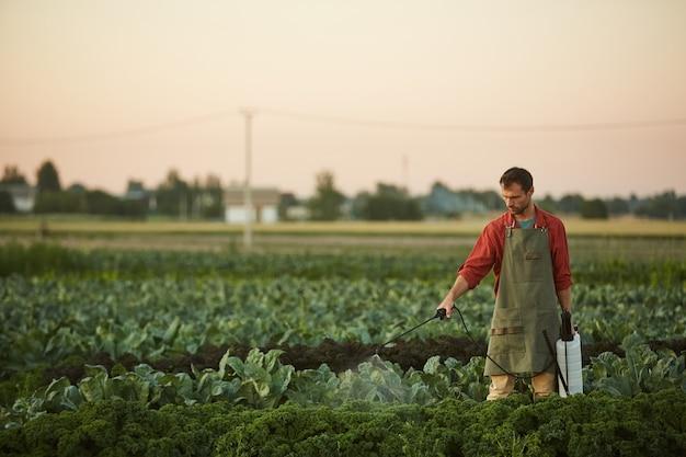 Szeroki kąt portret pracownika płci męskiej podlewania upraw i warzyw stojąc na plantacji, kopia przestrzeń