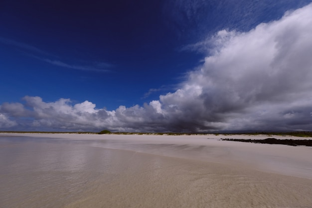 Szerokie ujęcie brzegu morza z trawiastym polem w oddali i chmurami w ciemnoniebieskim niebie