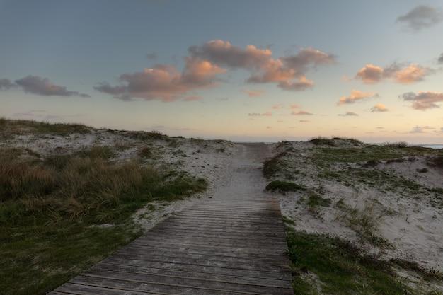 Szerokie ujęcie drewnianej ścieżki w piasku z trawą wokół i zachmurzonym niebem