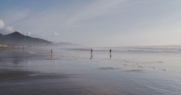 Szerokie ujęcie dzieci bawiące się nad brzegiem morza pod błękitnym pochmurnym niebem