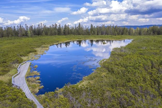 Szerokie ujęcie jeziora ribnica z małą platformą widokową w słowenii w pochmurny dzień