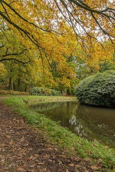 Szerokie ujęcie parku z jeziorem otoczonym krzewami i drzewami