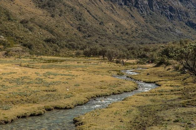 Szerokie ujęcie strumienia i pola otoczonego drzewami i dużą górą