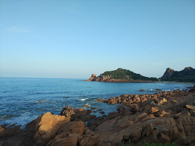 Szerokokątne ujęcie oceanu otoczonego górami i rosnącymi na nich gałązkami