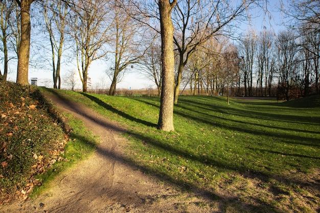 Szerokokątne ujęcie parku otoczonego drzewami w ciągu dnia