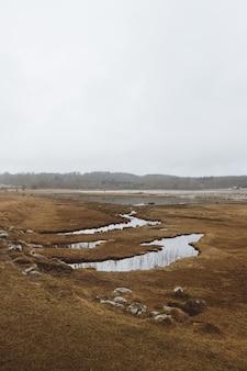 Szerokokątne ujęcie suchego krajobrazu pełnego zbiorników wodnych pod zachmurzonym niebem