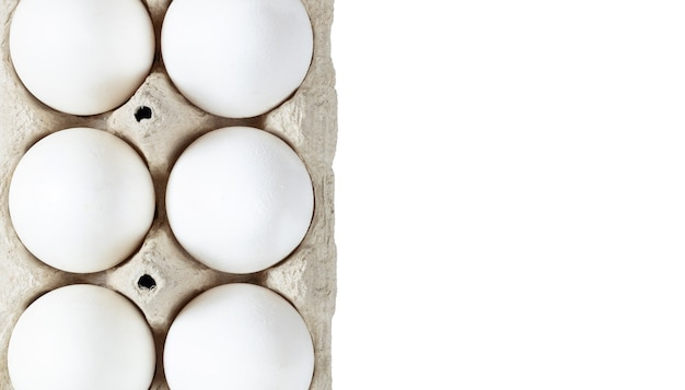 Sześć białych jajek umieszczonych w kartonowym pudełku na białym tle przestrzeni kopii zbliżenia