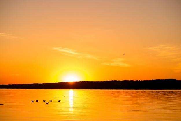 Sześć origami w postaci łodzi płynie nad jeziorem o zachodzie słońca wieczorem. papierowe łodzie dryfują z dala od wody