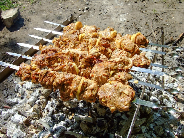 Sześć szaszłyków z mięsem smaży się na ognisku w lesie