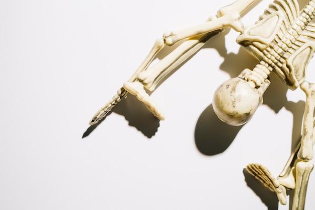 Szkielet leży z twarzą w dół