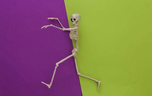 Szkielet na zielono-fioletowym papierze. halloweenowa dekoracja, przerażający motyw