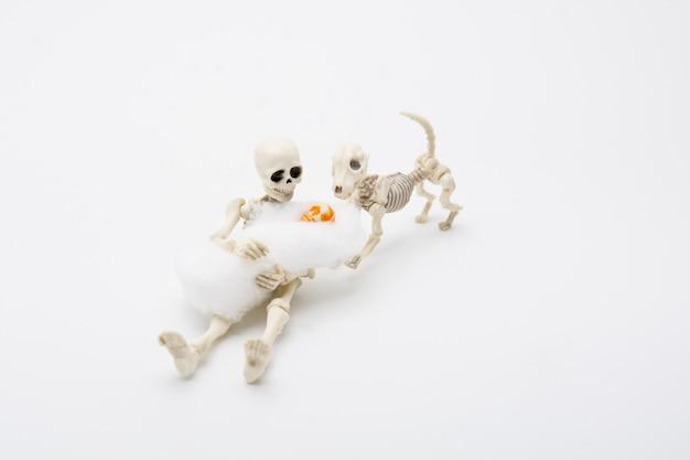 Szkieletowa mama z dziećmi i szkieletowym psem, szczęśliwa chwila na narodziny dziecka.