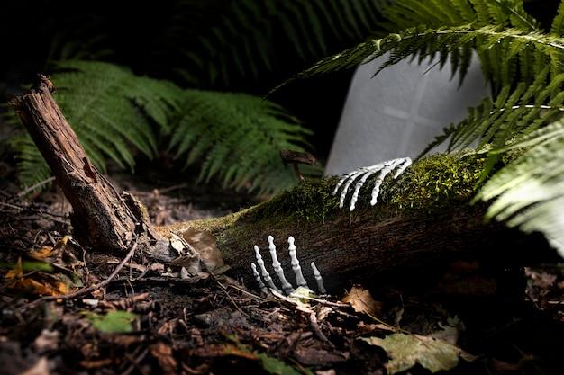 Szkieletowe ręce na ziemi na cmentarzu