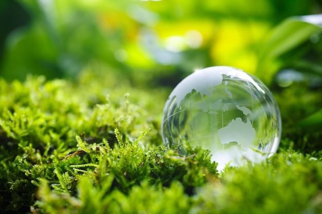 Szklana kula na zielonym mchu w koncepcji natury dla środowiska i ochrony