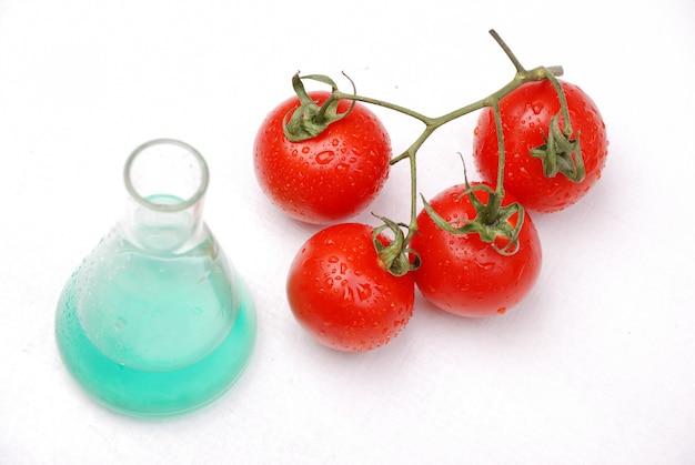 Szklana zlewka ze znakiem zagrożenia biologicznego i genetycznie zmodyfikowanym pomidorem