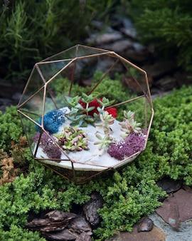 Szklane florarium z soczystymi roślinami wewnątrz zielonego mchu