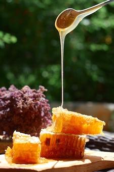 Szklane słoiki miodu na tle zielonych liści, koncepcja zdrowego śniadania