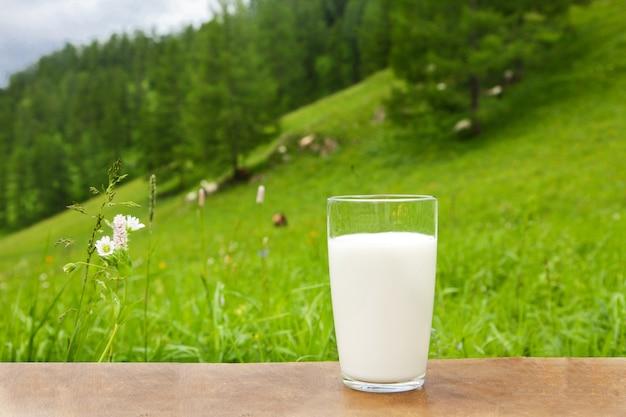 Szklanka koziego mleka stoi na stole na tle stada kóz pasących się w górach ałtaju.