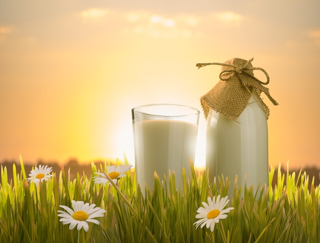 Szklanka mleka i butelka w trawie