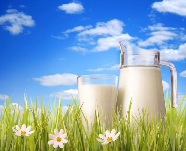 Szklanka mleka i dzbanek w trawie