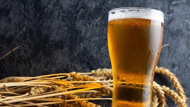 Szklanka zimnego piwa pszenicy z bliska na ciemnym tle z kłosy pszenicy